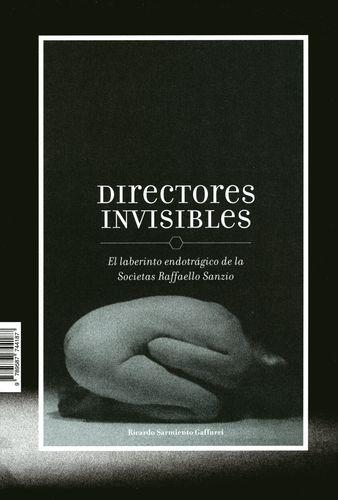 Directores Invisibles El Laberinto Endotragico De La Societas Raffaeelo Sanzio