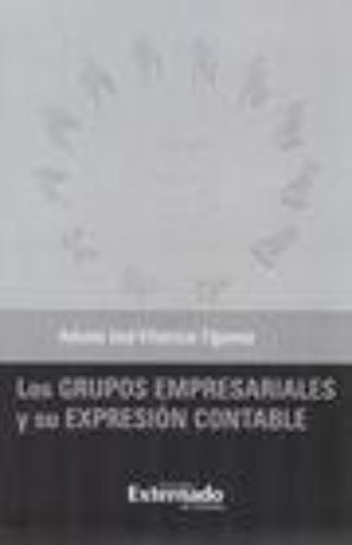 Grupos Empresariales Y Su Expresion Contable, Los