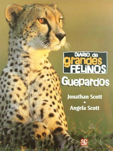 Diario de grandes felinos: guepardos