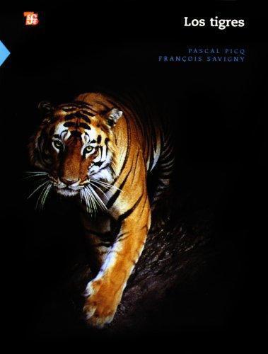 Tigres, Los