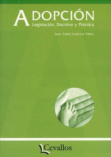 Adopcion Legislacion Doctrina Y Practica