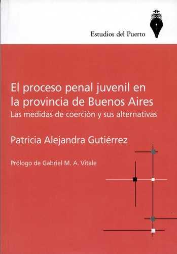 Proceso Penal Juvenil En La Provincia De Buenos Aires, El