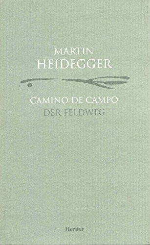 Camino De Campo / Der Feldweg