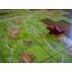 Carcassonne: La Princesa Y El Dragón (Exp)