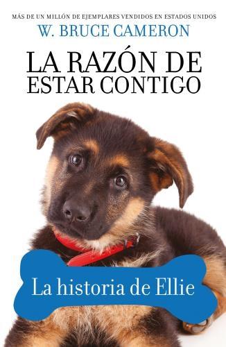 Razon De Estar Contigo, La. Historia De